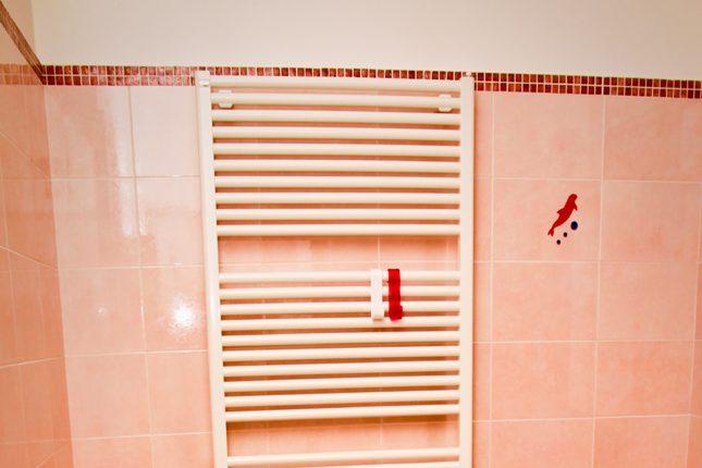la-casa-delle-bambole-il-bagno
